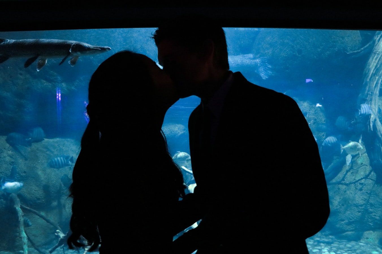Savoir embrasser : L'utilité des mains, et ce qui fait un mauvais baiser